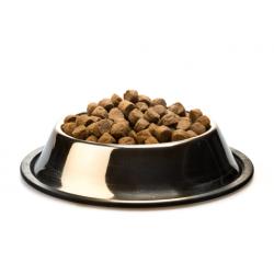 صحن اكل كبير للقطط والكلاب