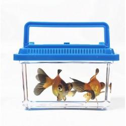 حوض سمك بلاستيك صغير