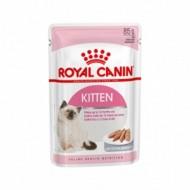 رويال كيتين طعام رطب للقطط الصغيرة