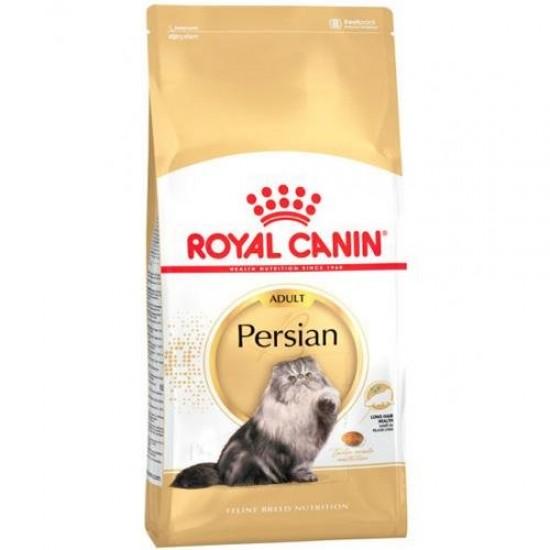رويال بيرشن للقطط الفارسيه